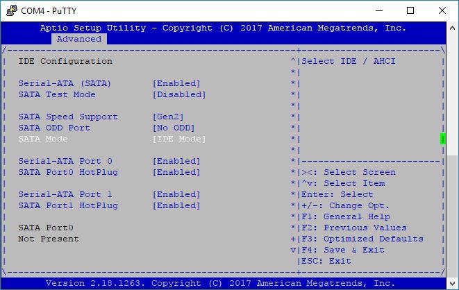 BIOS screen ide module