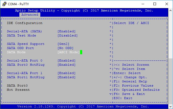 BIOS screen advanced